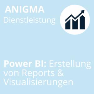 ANIGMA Dienstleistung Power BI Workshop