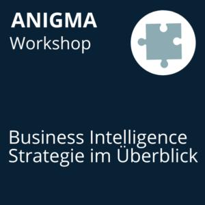 ANIGMA Workshop BI-Strategie